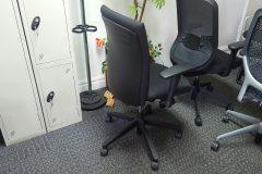 Haworth Comforto BL Operator Chairs