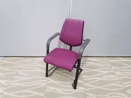 HAG Meeting Chairs