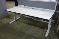 Used White Electric Height-Adjustable Desks